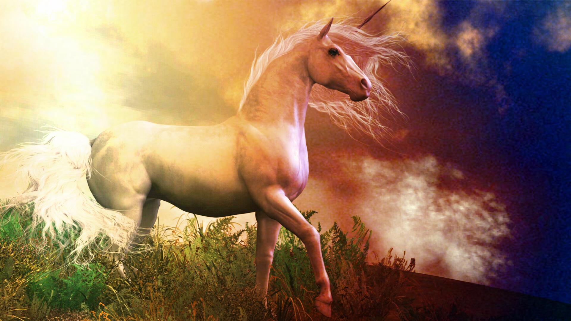 Unicorn background 13