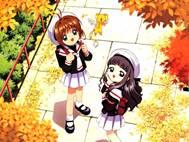 Sakura Card Captor wallpaper 13