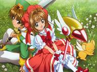 Sakura Card Captor wallpaper 6