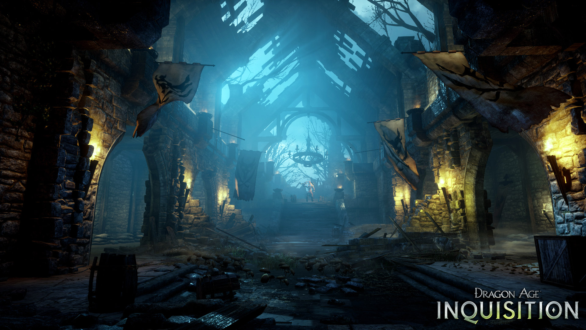 Dragon Age Inquisition Wallpaper 14