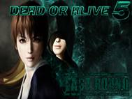 Dead or Alive 5 Last Round wallpaper 15