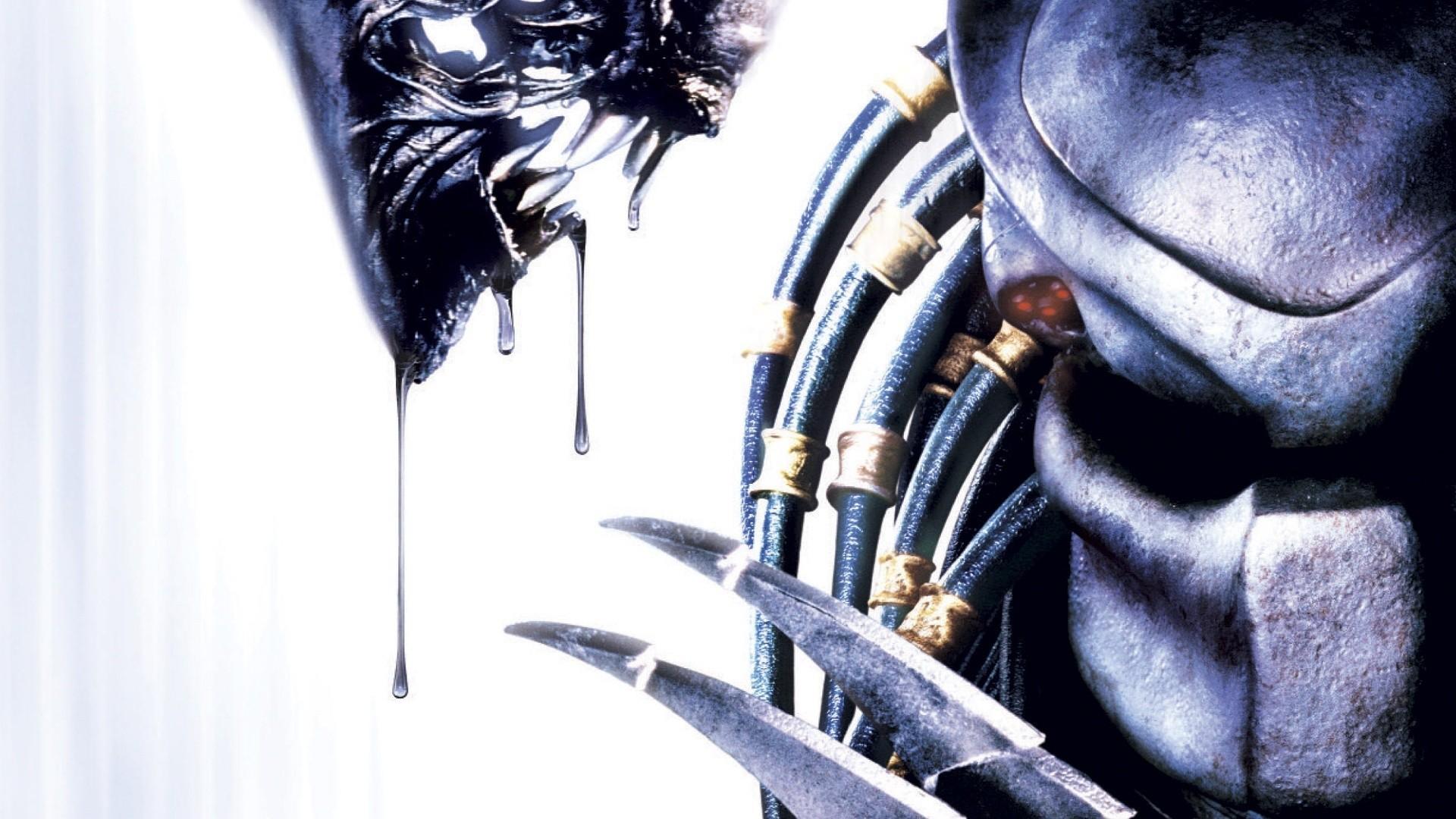 Alien Vs Predator Wallpaper 4
