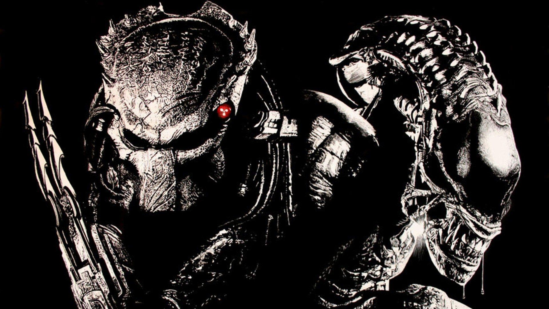 Alien Vs Predator Wallpaper 5