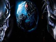 Alien vs Predator wallpaper 3