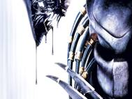 Alien vs Predator wallpaper 4