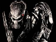 Alien vs Predator wallpaper 5