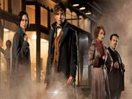 Fantastic Beasts and Where to Find Them wallpaper 5